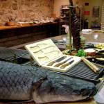 Chef, Gastronomy, Consultant Almir Da Fonseca dsc06157